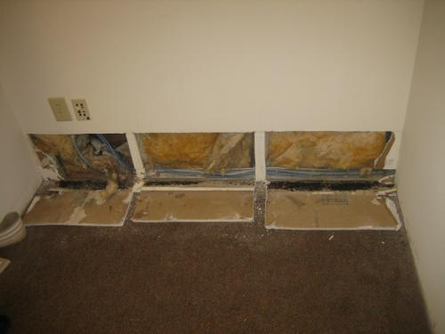 are you moldy accurate home inspections of the florida keys inc. Black Bedroom Furniture Sets. Home Design Ideas